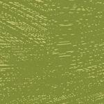 F73044 F8699 VV Trivio green
