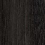 R20065 NW Horský dub šedý
