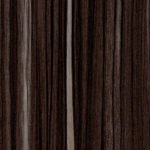 R50076 R5873 HG Sulawesi macassar black