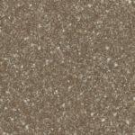 S66017 F8238 Bexter brown