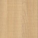 F 8968 LNW Canice Oak