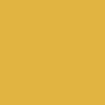 U163 ST9 Kari žlutá